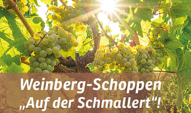 Weinbau Köth und Raffold